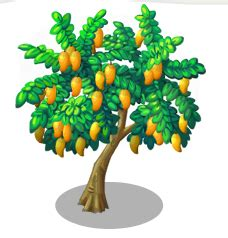 Essay on if i am a mango tree in English with examples